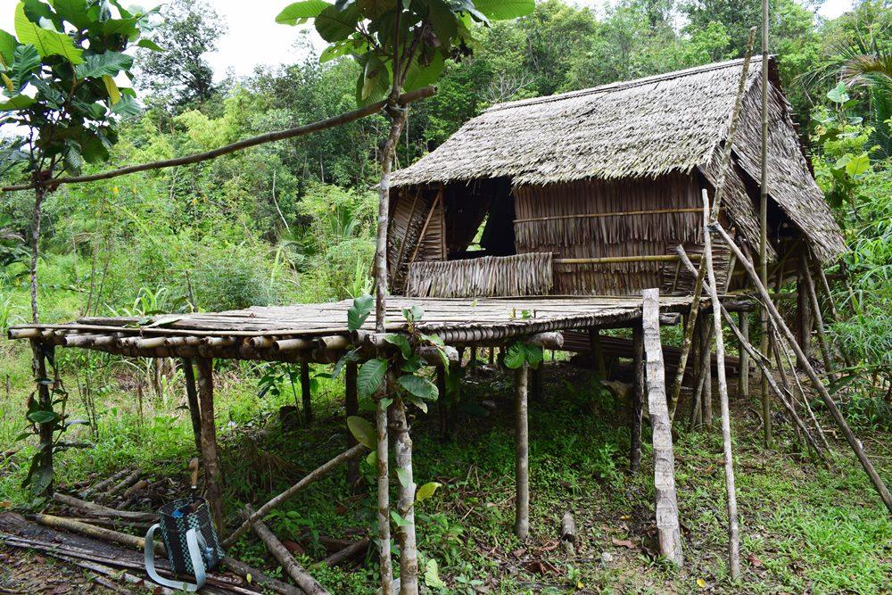 Bori Galank Bidayuh Bau Borneo Dictionary