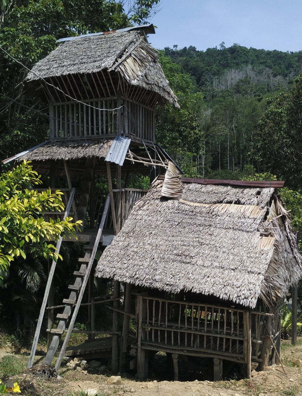 (PDF) Revisiting Community Bidayuh Empowerment Using ...